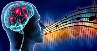 La Neuroscience du Chant