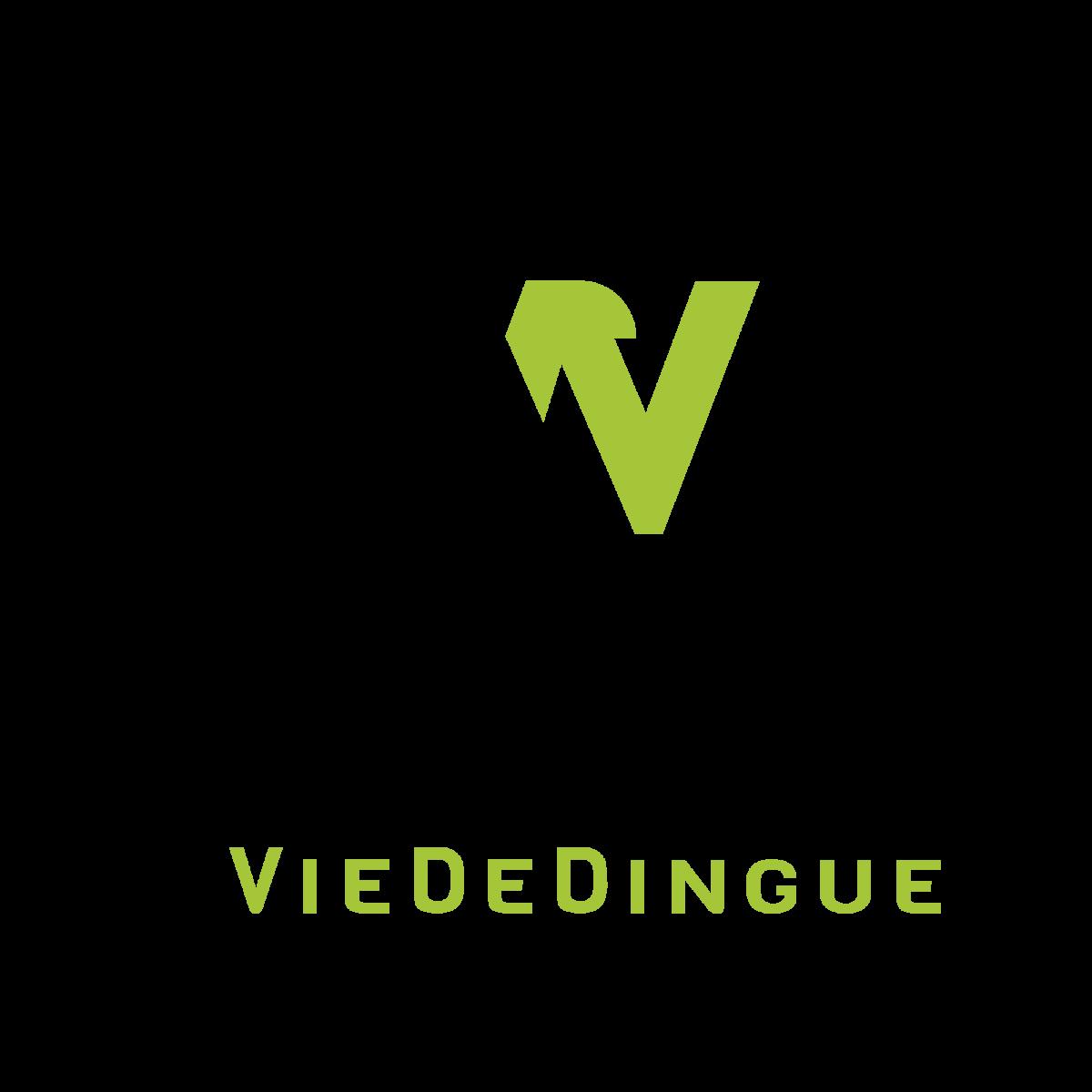VieDeDingue
