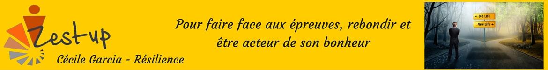 zestup.fr