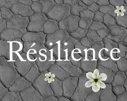 Définition de la résilience